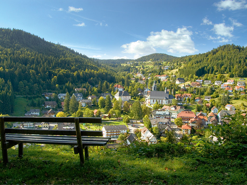 Best Hotels In Black Forest Germany