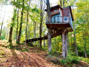 The Tiny Fern Forest Treehouse Vermont, US.  Back on the ground guests also have access to a hot tub