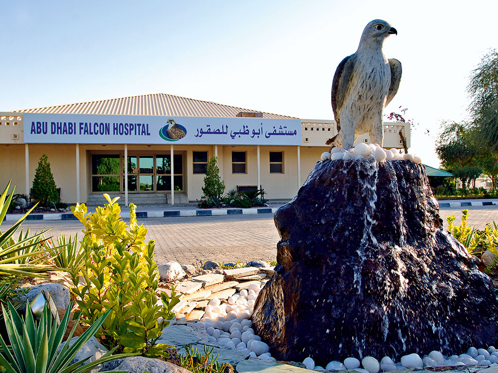 Outside the Abu Dhabi Falcon Hospital: The hospital has over 8,600 falcons that guests are encouraged to touch and feed