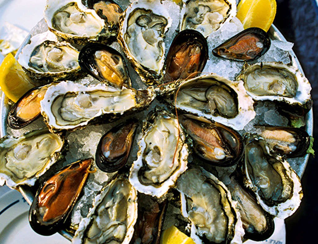 Enjoy fresh oysters in Galway