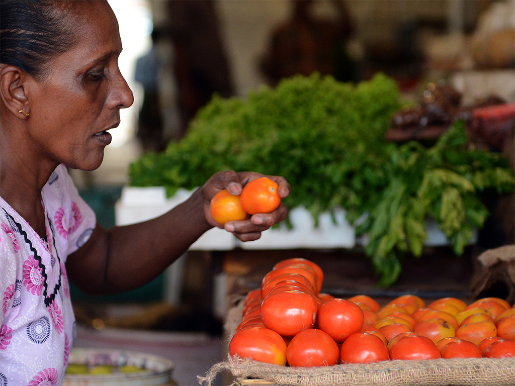 Ample dietary options exist for vegetarians travelling around the world