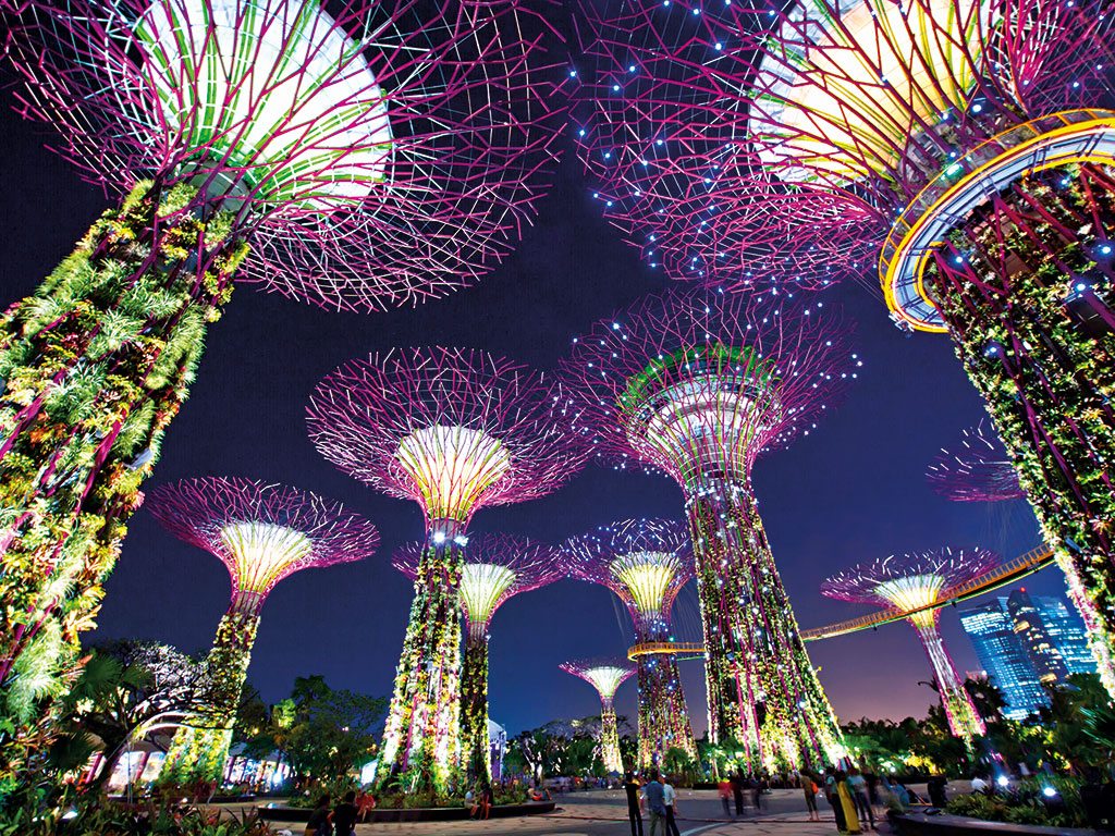 how to become a stockbroker in singapore