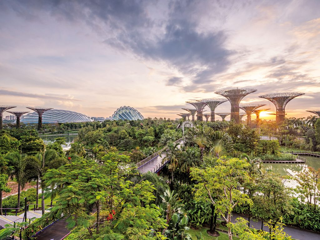 In the midst of urbanisation and rapid population growth, Singapore has made sustainable development a priority. Thanks to the nation's commitment to green initiatives, nature now thrives among its skyscrapers