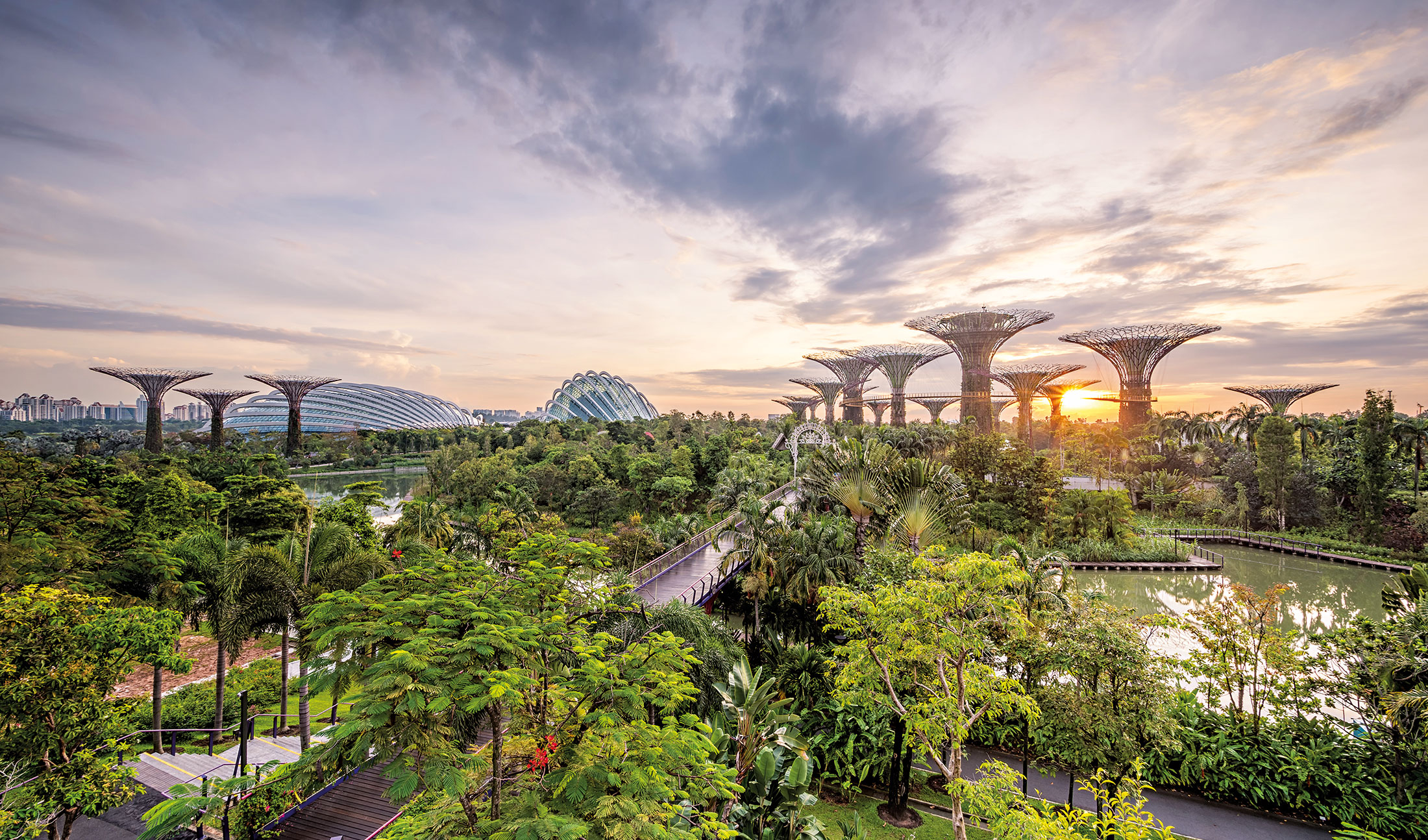 Singapore: the living city
